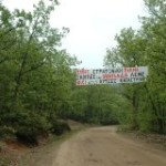 Χωματερές Τοξικών Μεταλλευτικών Αποβλήτων τα Δάση